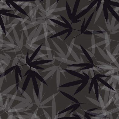 Bamboo : Charcoal