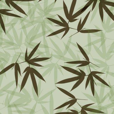 Bamboo : Green