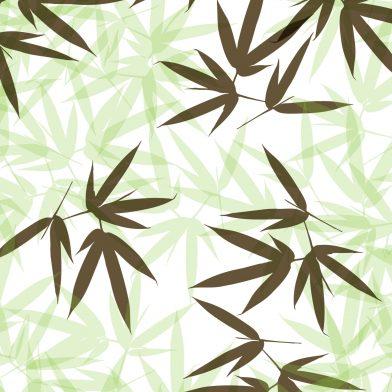 Bamboo : Verdant