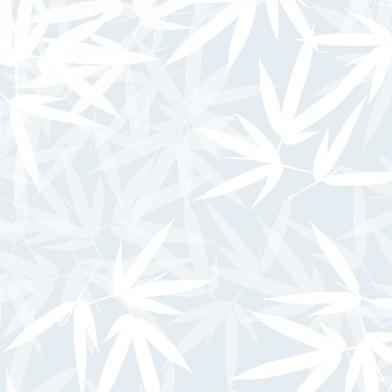 Bamboo : White