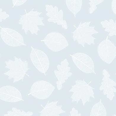 Fall : White