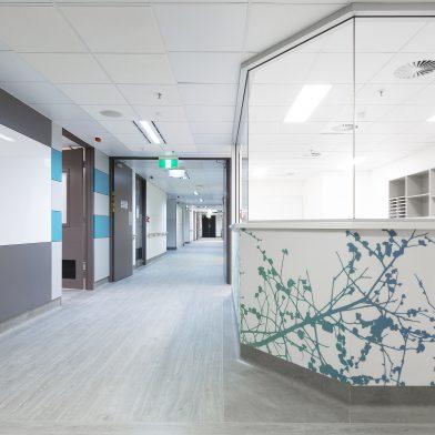 Calvary Public Hospital Maternity Ward