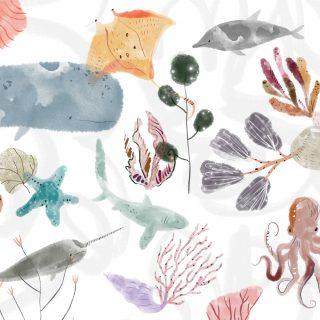 Under The Sea : Pumice