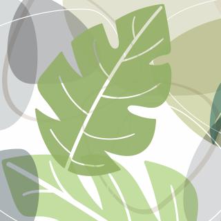 Flora : Pinnatum
